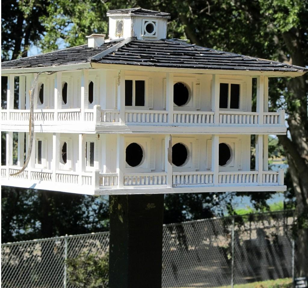 birdhouse-417241_1280