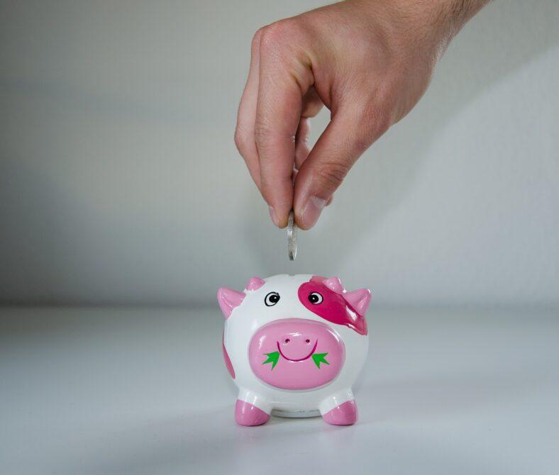 Oszczędzanie, świnka